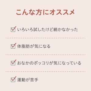 【ポイント10倍・10%OFF・送料無料】ヘルスエイド ローズヒップ 30日分|jintan|02