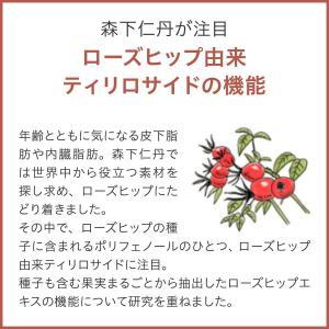 【ポイント10倍・10%OFF・送料無料】ヘルスエイド ローズヒップ 30日分|jintan|03