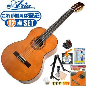 初心者セット クラシックギター 12点 入門セット Aria Classic Guitar A20 アリア アコースティック A-20 jivemusic