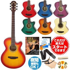 初心者セット アコースティックギター アリア アコギ 11点...