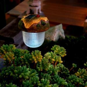 ソーラーガーデンライト <てんとう虫(甲虫)>|LED|ガーデニング|-66186|jjprohome1