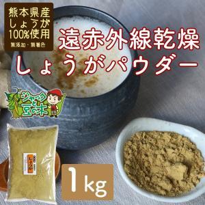 業務用 遠赤乾燥生姜粉末 1kg 無添加 無着色 熊本産 国産 jmame