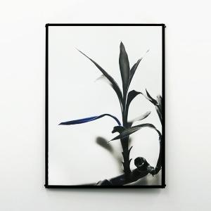 ポスター おしゃれ B2 アート インテリア 雑貨 BLUE FOLIUM|jmc