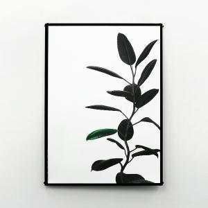 ポスター おしゃれ B2 アート インテリア 雑貨 GREEN FOLIUM|jmc