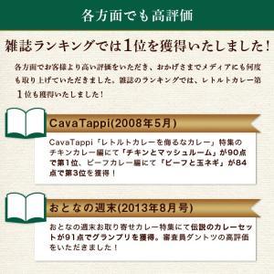 カレー レトルト松蔵ふらんす亭 伝説のビーフカレー 180g×3パック 送料無料|jn-mall|12