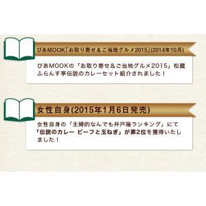 カレー レトルト松蔵ふらんす亭 伝説のビーフカレー 180g×3パック 送料無料|jn-mall|13
