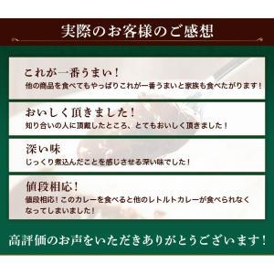 カレー レトルト松蔵ふらんす亭 伝説のビーフカレー 180g×3パック 送料無料|jn-mall|14