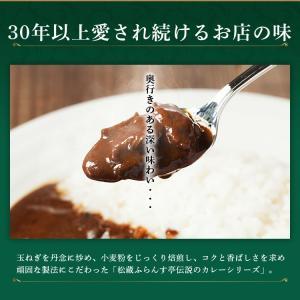 カレー レトルト松蔵ふらんす亭 伝説のビーフカレー 180g×3パック 送料無料|jn-mall|03