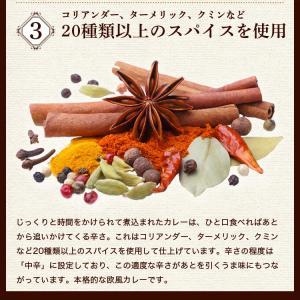 カレー レトルト松蔵ふらんす亭 伝説のビーフカレー 180g×3パック 送料無料|jn-mall|06