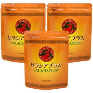 サラシアプラス3袋(120粒×3)