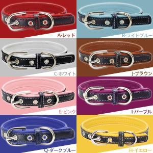 犬 首輪 ペット首輪 シンプル首輪 小型犬 中型犬 犬の首輪 ベーシック首輪 ボーナスセール jnh 02