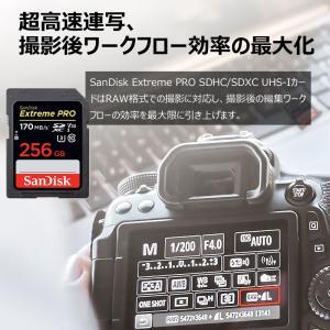 SanDisk Extreme Pro UHS-I U3 SDXC 256GB class10 170MB/s V30 4KUltra HD対応 SDSDXXY-256G-GN4IN 海外パッケージ品SA1411XXY 翌日配達 jnh 05