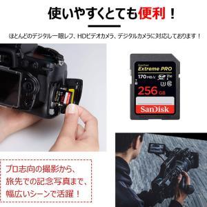SanDisk Extreme Pro UHS-I U3 SDXC 256GB class10 170MB/s V30 4KUltra HD対応 SDSDXXY-256G-GN4IN 海外パッケージ品SA1411XXY 翌日配達 jnh 07
