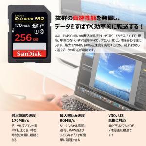 SanDisk Extreme Pro UHS-I U3 SDXC 256GB class10 170MB/s V30 4KUltra HD対応 SDSDXXY-256G-GN4IN 海外パッケージ品SA1411XXY 翌日配達 jnh 09