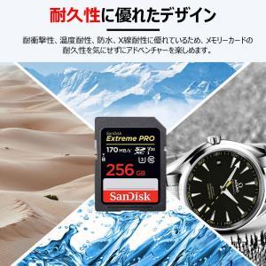 SanDisk Extreme Pro UHS-I U3 SDXC 256GB class10 170MB/s V30 4KUltra HD対応 SDSDXXY-256G-GN4IN 海外パッケージ品SA1411XXY 翌日配達 jnh 10