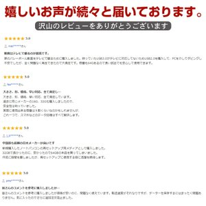 TOSHIBA 東芝 USBメモリー 64GB TransMemory USB2.0対応  海外パッケージ品 感謝セール 翌日配達対応|jnh|11