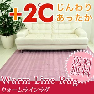 ウォームライン ラグマット 195×195cm ラグ ラグマット カーペット 絨毯 じゅうたん 温感加工 あったか ぽかぽか 防ダニ おしゃれ jonan-interior