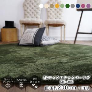 全20色の洗えるラグマット ラグ ラグマット ラグ 北欧 ラグ カーペット EXマイクロファイバーラグ 円形 直径200cm 洗える グリーン グレー|jonan-interior