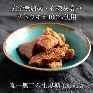 生黒糖 150g×2袋 無農薬・自然栽培さとうきび使用の純黒糖 jonetsukokuto
