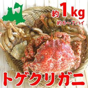 トゲクリガニ 中サイズ(メス)約1kg6〜7ハイ(塩茹で)青...