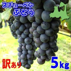 (送料無料)訳ありスチューベンぶどう 5kg 青森県鶴田産