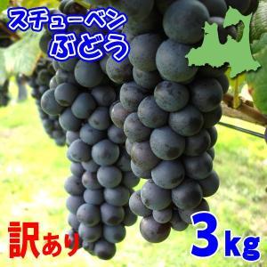 (送料無料)訳ありスチューベンぶどう 3kg 青森県鶴田産