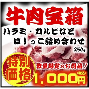 肉宝箱 わけあり はしっこ 肉 牛 詰め合わせ 250g お試し 送料無料