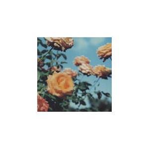 [枚数限定][限定盤]Relation/globe[CD][紙ジャケット]【返品種別A】の画像