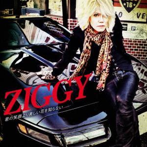 君の笑顔より美しい花を知らない/ZIGGY[CD+DVD]【...