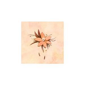 Marble/バルーン[CD]【返品種別A】|joshin-cddvd