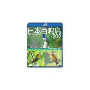 シンフォレストBlu-ray 日本百鳴鳥 202 HD ハイビジョン映像と鳴き声で愉しむ野鳥図鑑/教養[Blu-ray]【返品種別A】