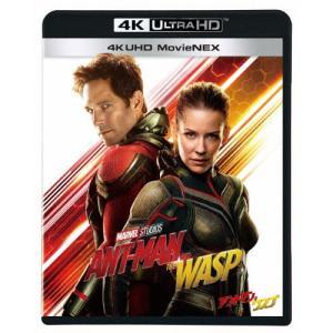 アントマン&ワスプ 4K UHD MovieNEX/ポール・ラッド[Blu-ray]【返品種別A】|joshin-cddvd