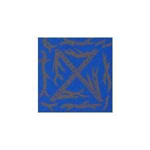 BLUE BLOOD/X[CD]【返品種別A】