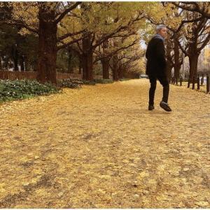 [枚数限定][限定盤]或る秋の日/佐野元春[CD]【返品種別A】|joshin-cddvd