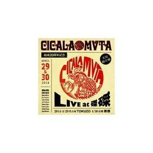 CICALA-MVTA結成20周年記念 LIVE at 磔磔/シカラムータ[CD]【返品種別A】
