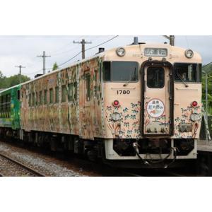 トミックス (N) 98076 JR キハ40 1700形ディーゼルカー(道南 海の恵み・道央 花の...