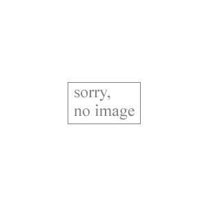 ダンロップ 都市ガス用ガスホース(1m) TG9.5-1MB(3375) 返品種別A|joshin
