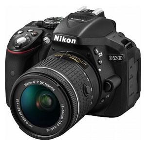 ニコン デジタル一眼レフカメラ「D5300」AF-P 18-...