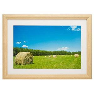 在庫状況:入荷次第出荷/※画像は使用イメージです。◆アクリル板の使用で安心感が向上◆木目調額縁 ◆木...
