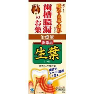 (第3類医薬品) 小林製薬 生葉液薬 20g  返品種別B|joshin