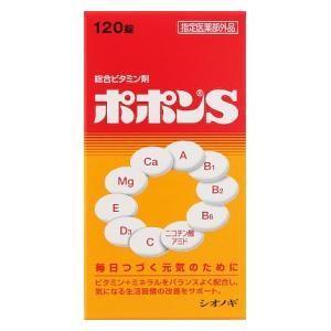 塩野義製薬 ポポンS 120錠  返品種別B|joshin