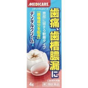 (第2類医薬品) 森下仁丹 メディケア デンタルクリーム T4g  返品種別B|joshin