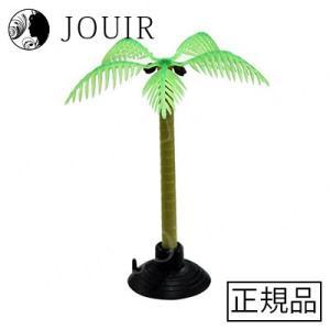オカヤドカリのヤシの木|jouir-jp