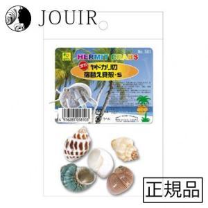 オカヤドカリの宿替え貝殻 S|jouir-jp
