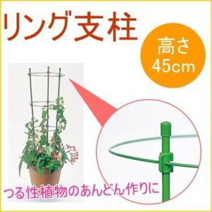 リング支柱 45cm 1個入 園芸 ガーデニン...の関連商品8