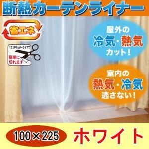 【サイズ】 約100×225cm(2枚入り)    【材質】 塩化ビニール樹脂100% Sカン:ポリ...