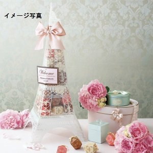 パリ ド タワー Paris de Tower (マカロンクッキー) 36個セット 29-1201|joyfulgame