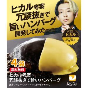 ヒカル 考案 冗談抜きで旨い ハンバーグ(120g) 黒カレーソース×ハニーマスタード+チーズ 付き 4個入り 冷凍 Joyfullオンラインショップ