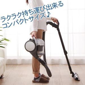 掃除機 サイクロンクリーナー 毛取りヘッド CSK-165-P アイリスオーヤマ 人気|joylight|03