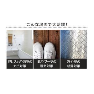 除湿機 衣類乾燥 アイリスオーヤマ コンプレッサー式 除湿器 衣類乾燥機  室内物干し 部屋干し 除湿 乾燥 梅雨 小型 DCE-6515:予約品 joylight 12